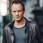 Shape Of My Heart by Sting - Songfacts
